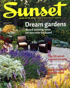 Sunset_Dream Gardens